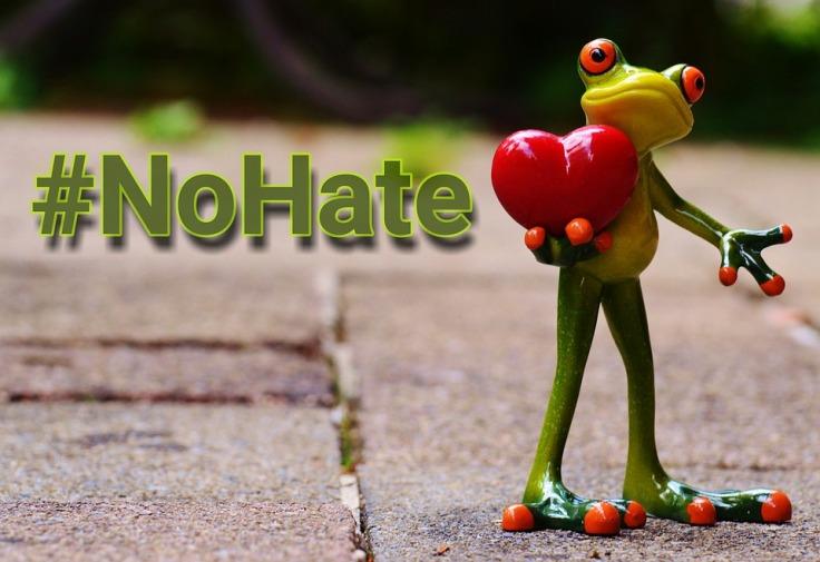 no hate frog image